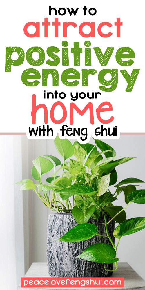 How To Attract Positive Energy To Your Home With Feng Shui Feng Shui Plants Feng Shui Gardening For Beginners