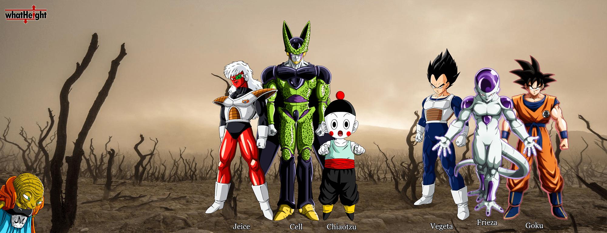 Anime Dragon Ball Size Comparison Anime Characters Anime Dragon Ball Anime