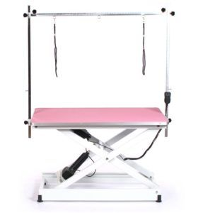 This Pedigroom Electric Dog Grooming Table Is Fully Height