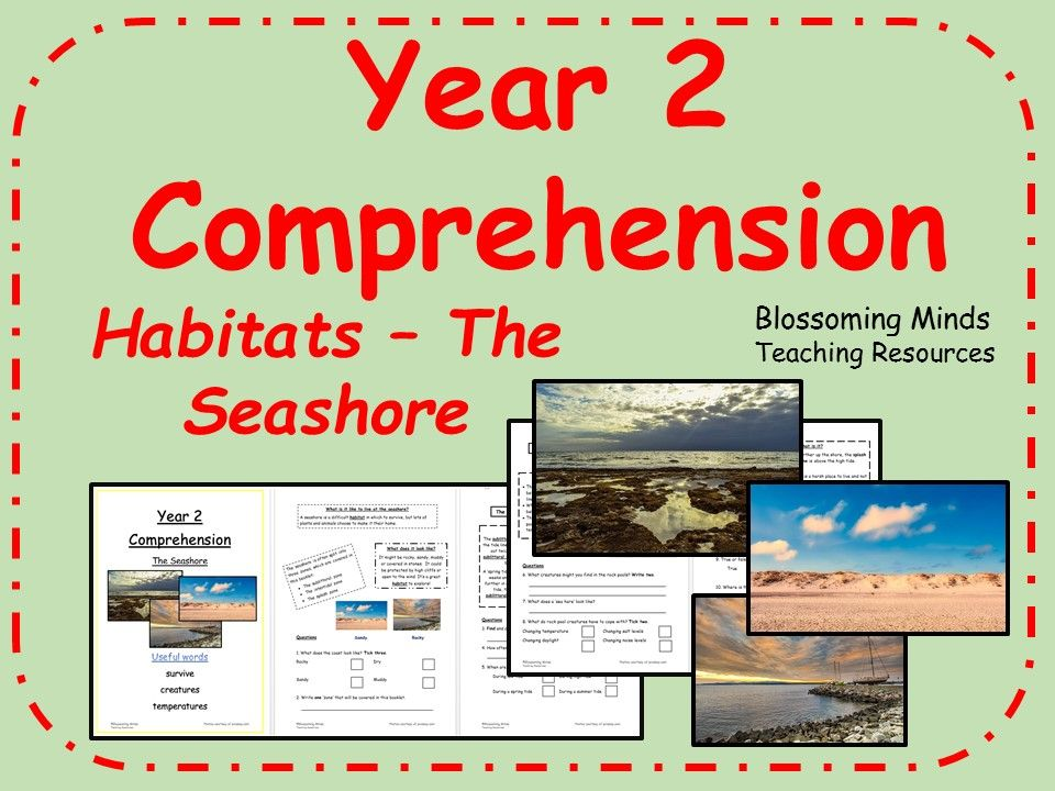 year 2 reading comprehension the seashore habitats science comprehensions science. Black Bedroom Furniture Sets. Home Design Ideas