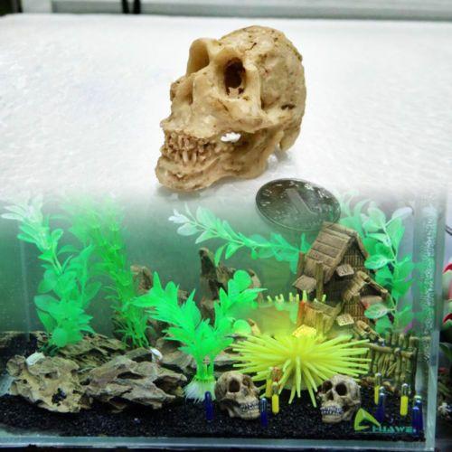 Halloween Aquarium Decorations Aquarium Pinterest Aquarium - halloween fish tank decorations