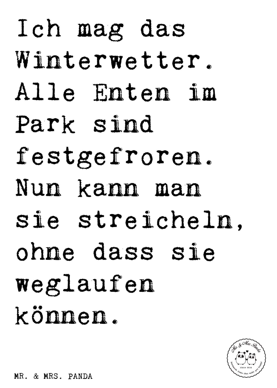 lustige sprüche winter Spruch: Ich liebe den Winter, wenn im Stadtpark alle Enten im See  lustige sprüche winter