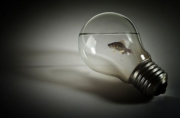Cool Light Bulbs cool lightbulbs | cool light bulbs | lightbulbs | pinterest