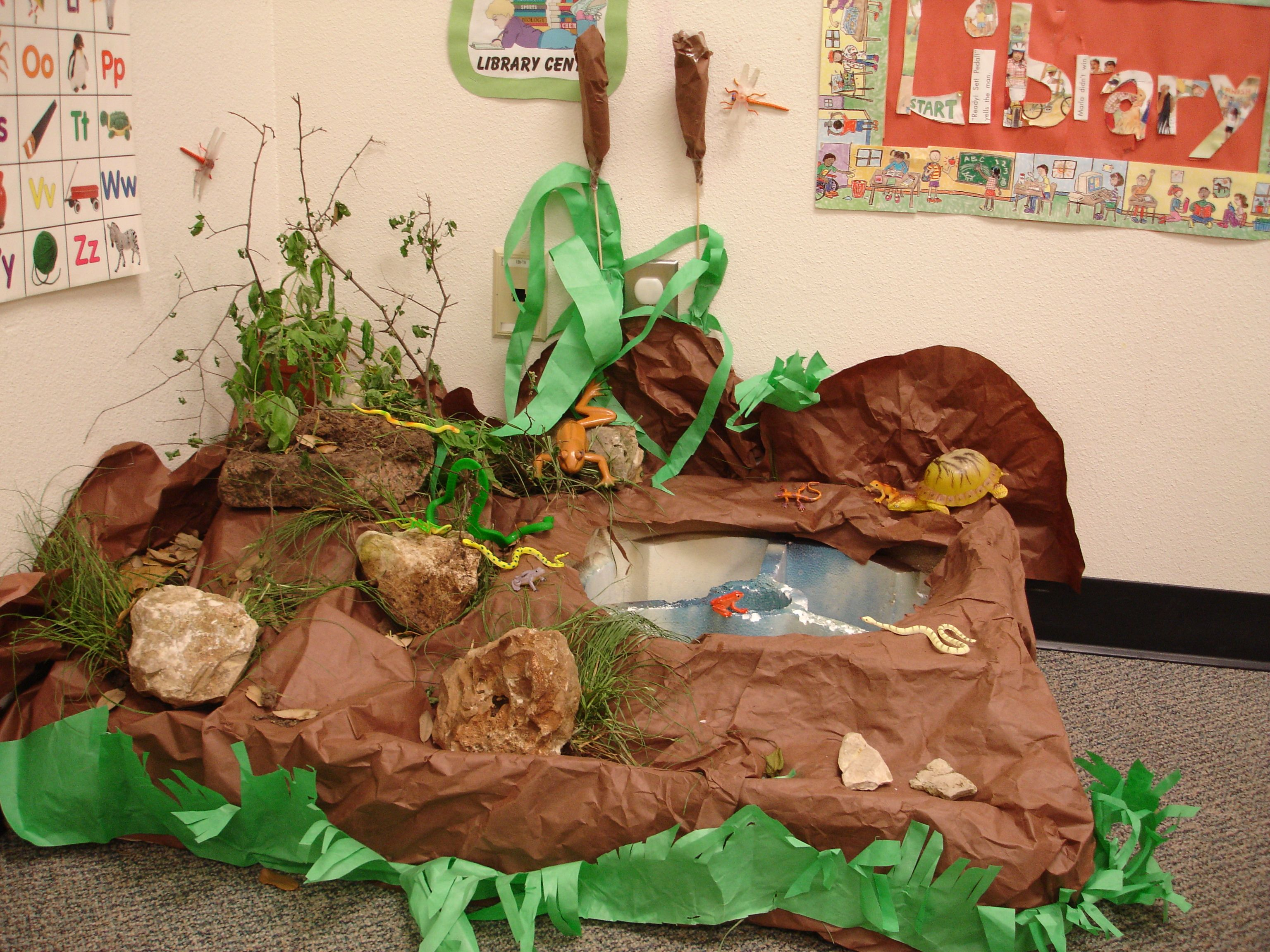 Creating A Classroom Pond Brings Nature Indoors Ask Open Ended Questions And Be Prepared To