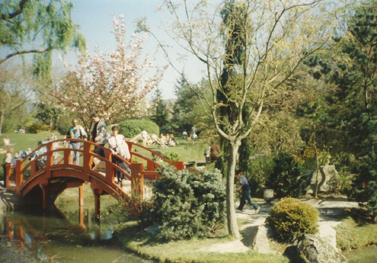 Jardin Japonais Compans Caffarelli Toulouse Outdoor Furniture