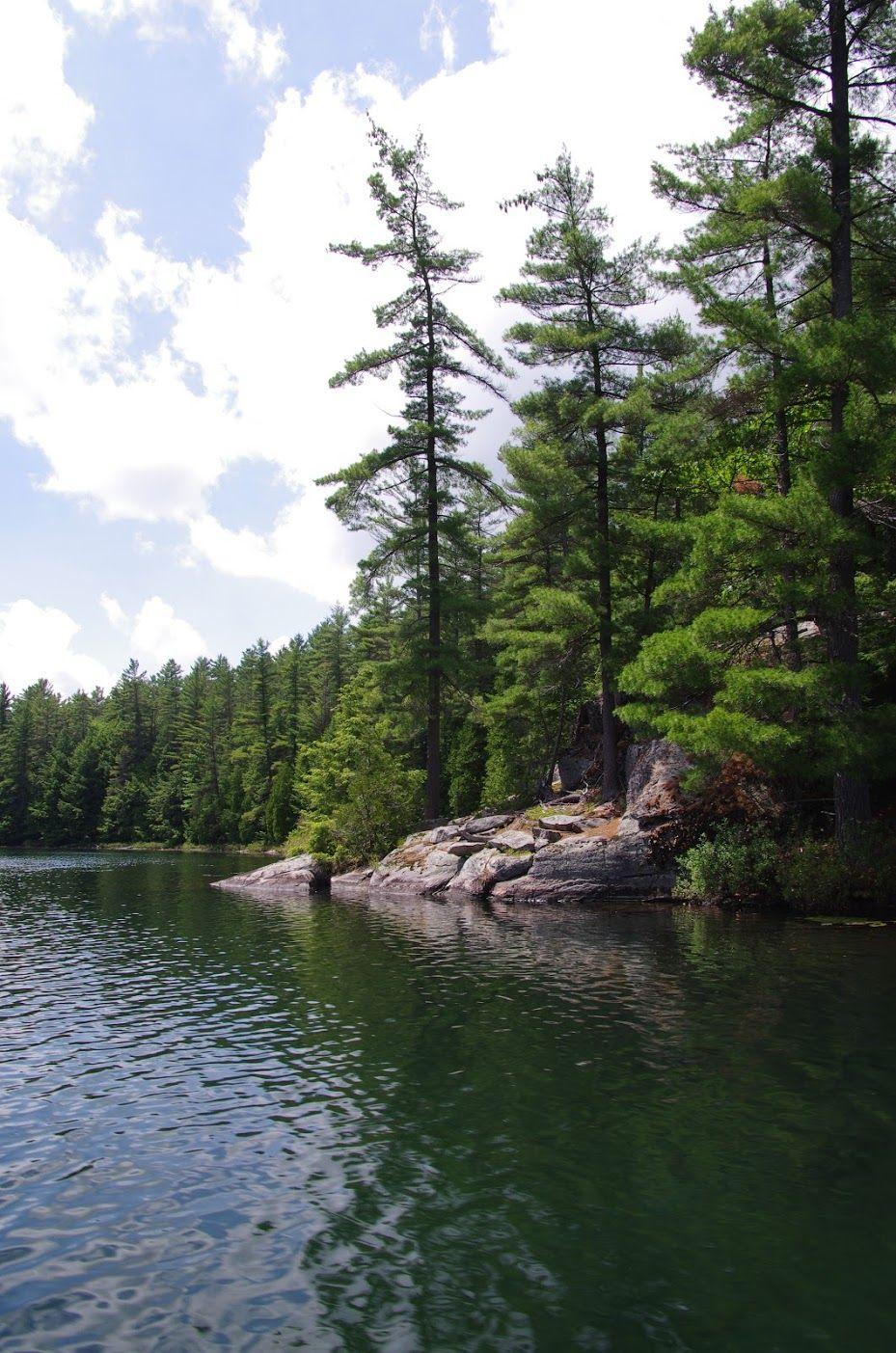 Portage Bay  Clear Lake Conservation Reserve, Haliburton
