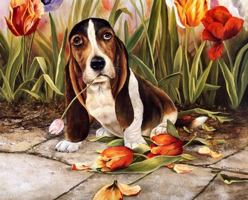 Картинки мастера, рисованные картинки с животными красивые и смешные