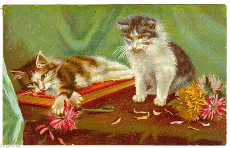 Postcard Cats w Book Flowers Maurice Boulanger Chromo | eBay