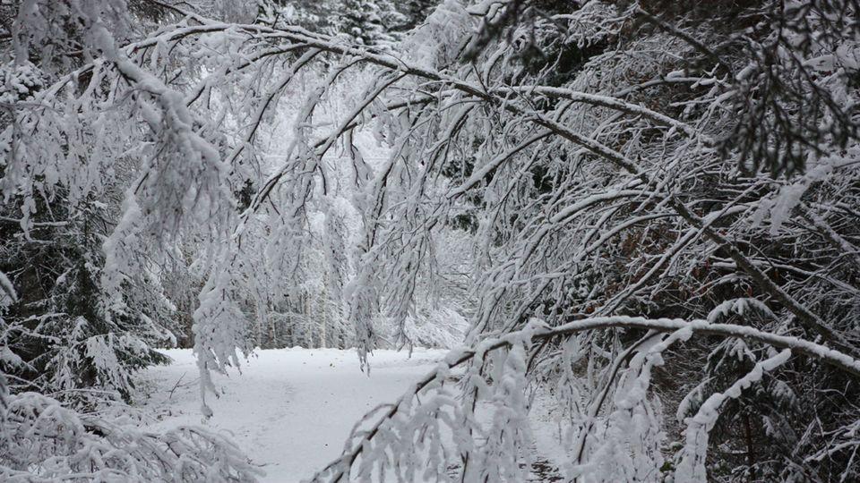 Déjà l'hiver le 21 octobre 2013 en Finlande