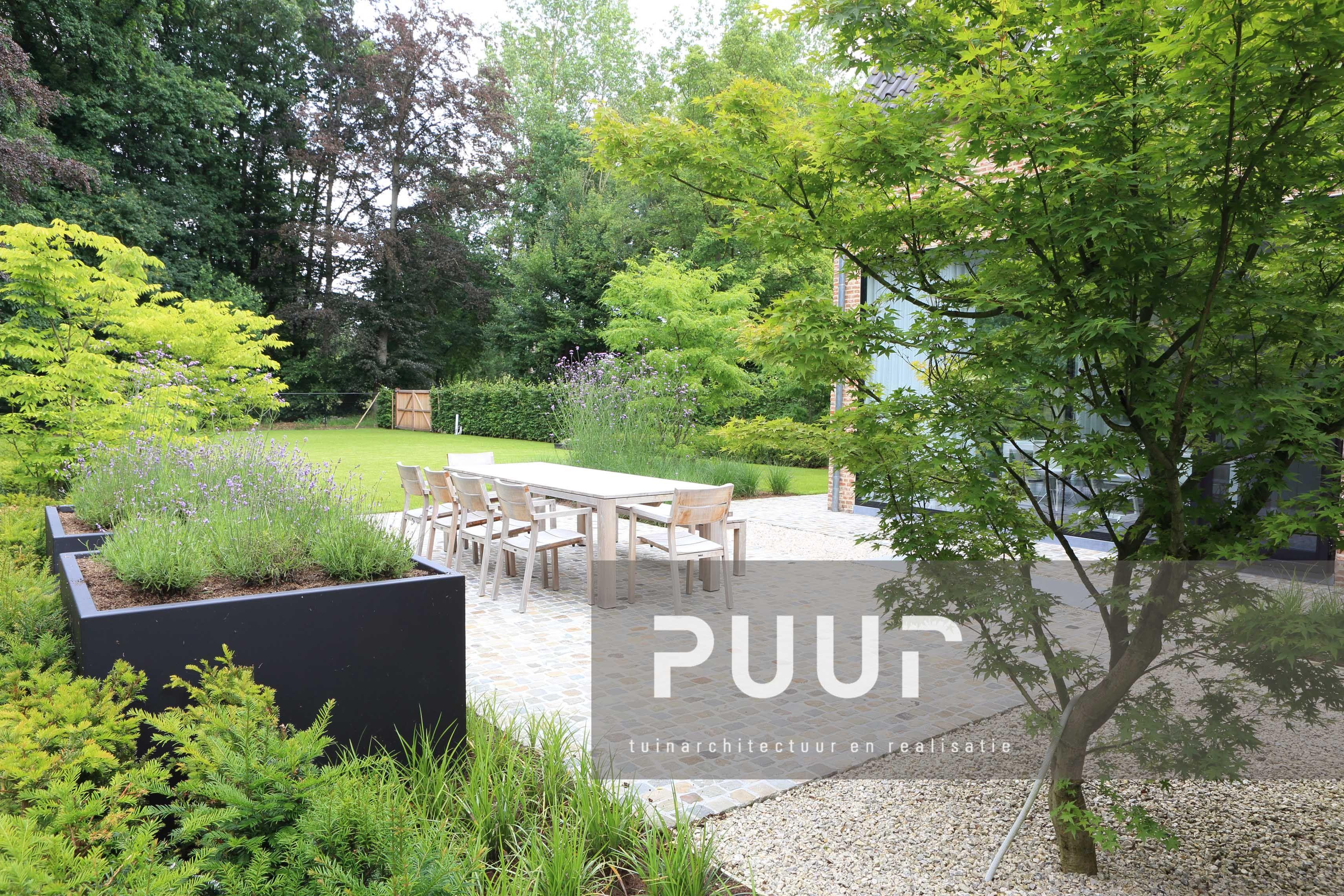 Strakke tuin met sfeervolle terraszone puur groenprojecten