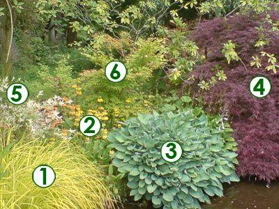 De petits arbres pr s d 39 un plan d 39 eau sc nes de jardins for Amenager petit jardin 50m2