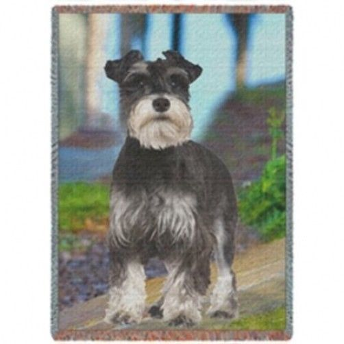 Miniature Schnauzer Woven Throw Blanket 50 X 60 Schnauzer Art Dog Items Miniature Schnauzer