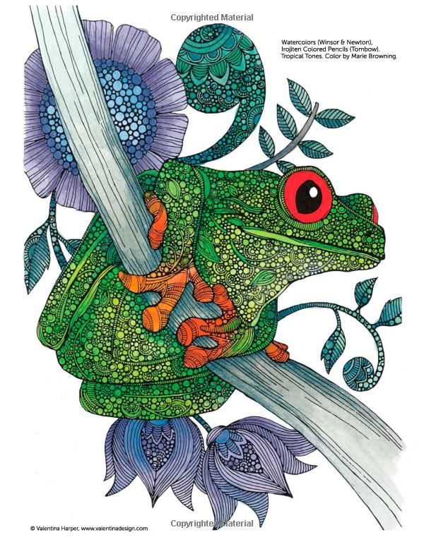 Creative Coloring Animals Art Activity Pages To Relax And Enjoy