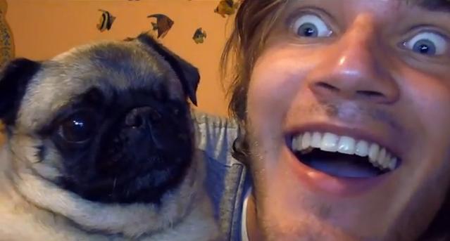 pewdiepie pug maya | PewDiePie's Dog Maya | Pugs ...