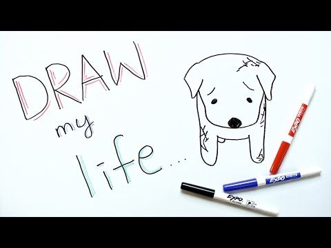 Draw My Life | Dog Meat Trade in South Korea - YouTube