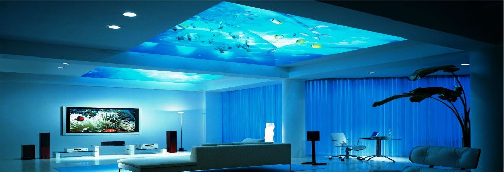 fantastic aquarium installed on the ceiling - Give an endless charm ...