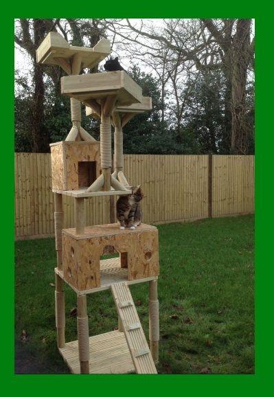 Cat Climbing Towers Com Cat Condo Katzen Spielzeug