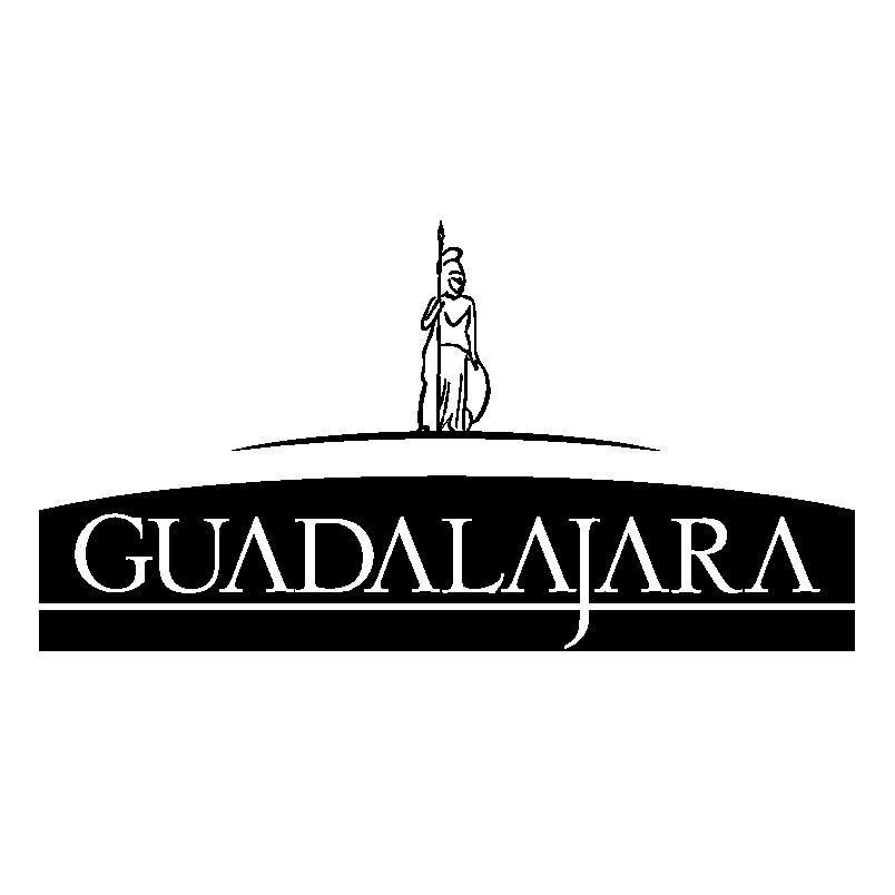 gdl logo Guadalajara Jalisco LOGOS Pinterest Guadalajara and - invoice logo