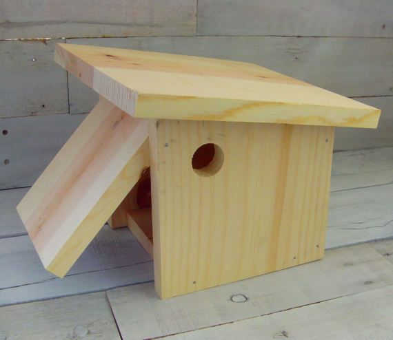 Diy Birdhouse Kit Wood Craft Kit Build Your Own Authentic