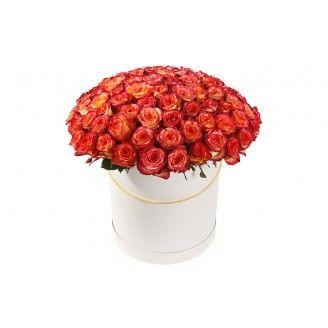 Букет Букет 101 роза Хай Мэджик в шляпной коробке