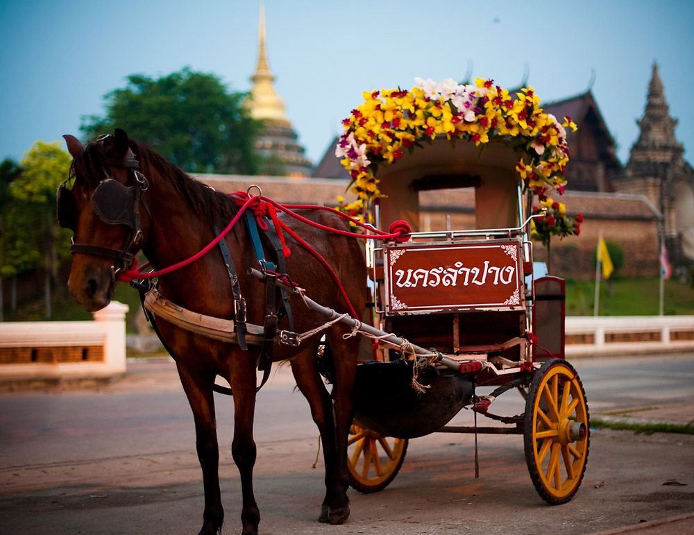 Jobs in Thailand for Foreigners with Visa and Work Permit