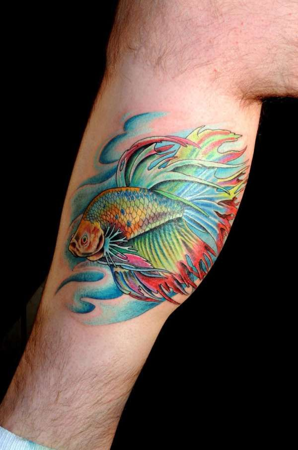 beta tattoo the simese fighting fish bettas pinterest fish tattoos tattoo and tatting. Black Bedroom Furniture Sets. Home Design Ideas