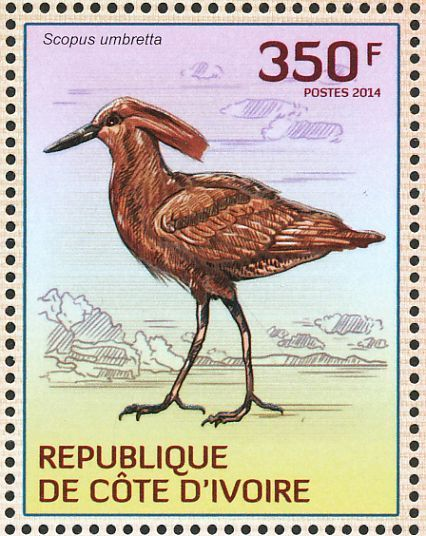Hamerkop stamps - mainly images - gallery format