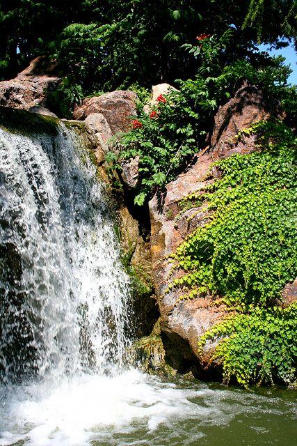 Waterfall Garden - Chicago Botanic Garden - Cascadas En Jardines