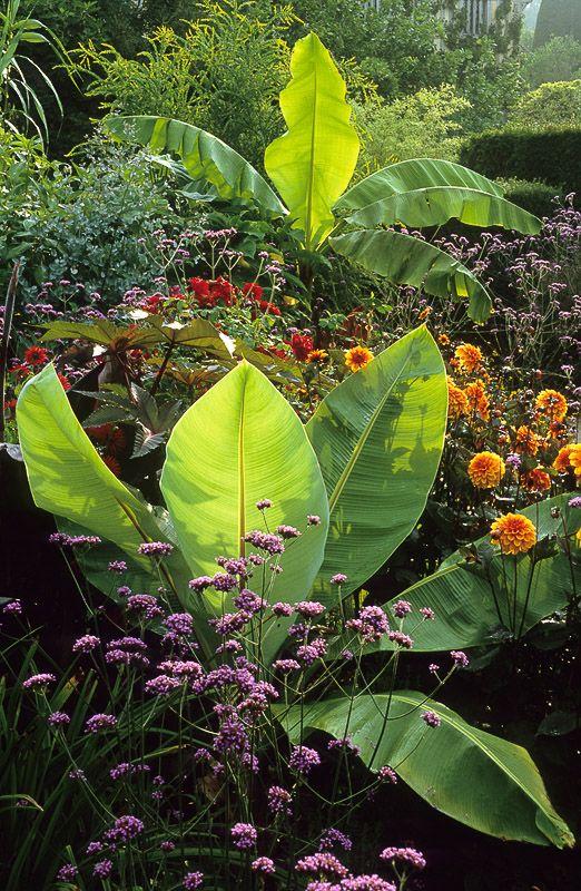 Planting Inspiration: Inside Garden Design Magazine ...