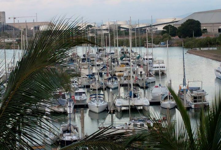 In Townsville for work. View from my girl balcony of the Yacht Club boats. I'm going to the Club for dinner tonight.