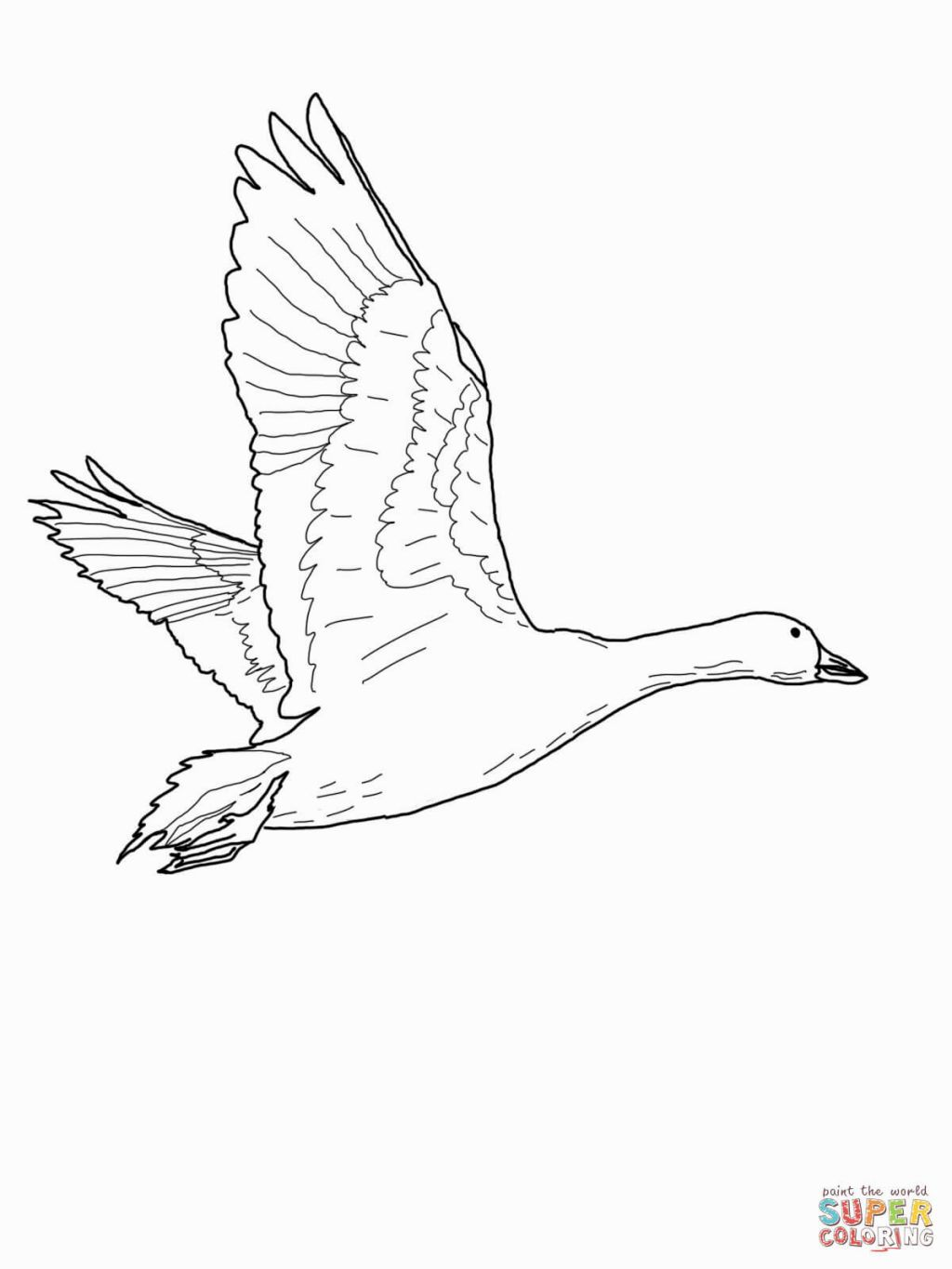 Goose Coloring Page Goose Tattoo Snow Goose Goose Drawing