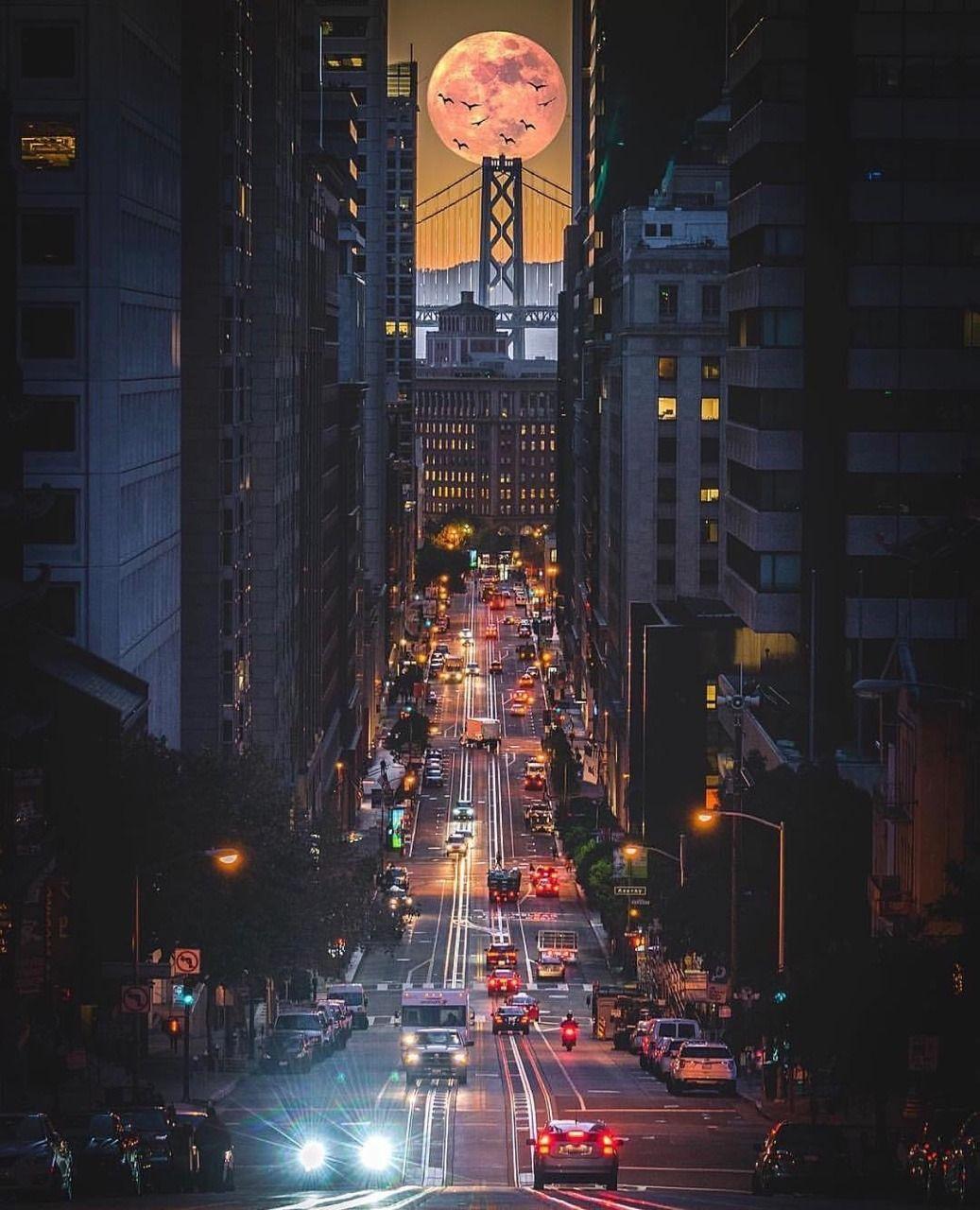 California Street San Francisco San Francisco Sites San Francisco California San Francisco Bay Area