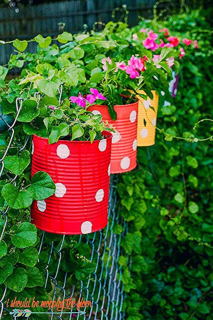 Photo of Tin Can Flower Garden
