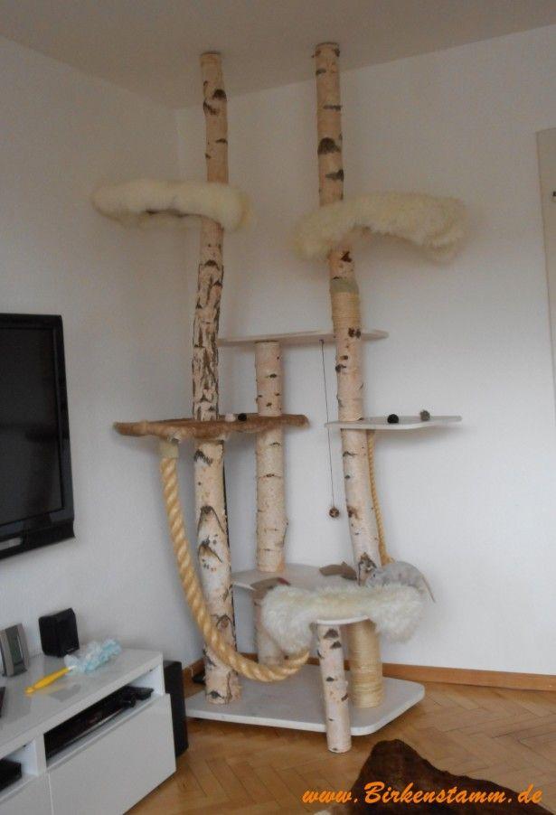 katzen kratzbaum katzenhaus kletterbaum katzen diy. Black Bedroom Furniture Sets. Home Design Ideas