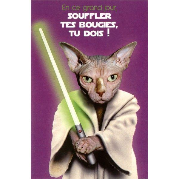 Carte Pets Rock En Ce Grand Jour Souffler Tes Bougies Tu Dois