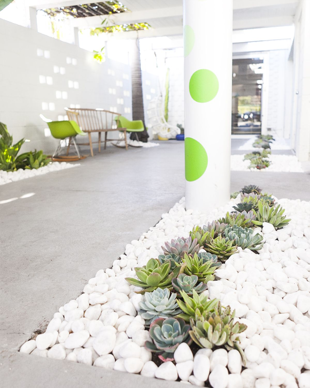 Garden Design Ideas With Pebbles: Growing Succulents Inside And Out
