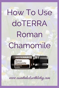 Doterra Roman Chamomile Essential Oil Are Essential Oils