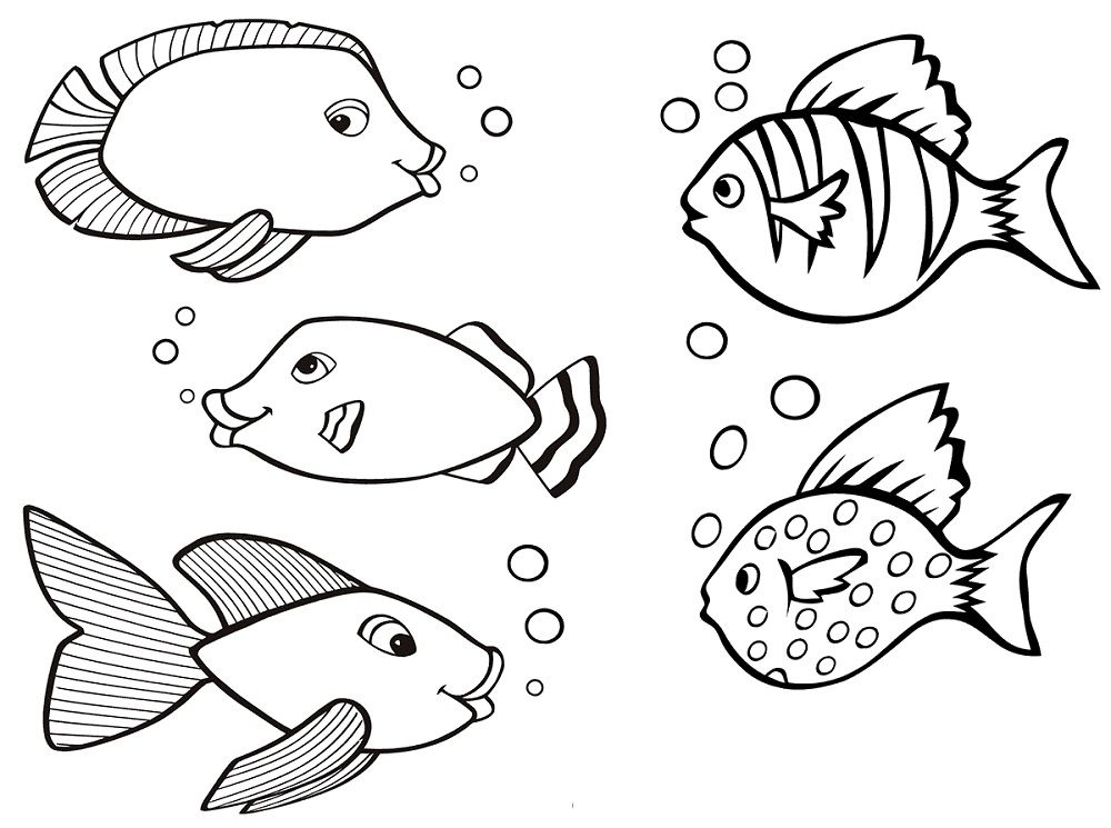 Color Pages Of Fish Kiddo Shelter Coloring Pages For Kids Coloring Pages Fish Coloring Page