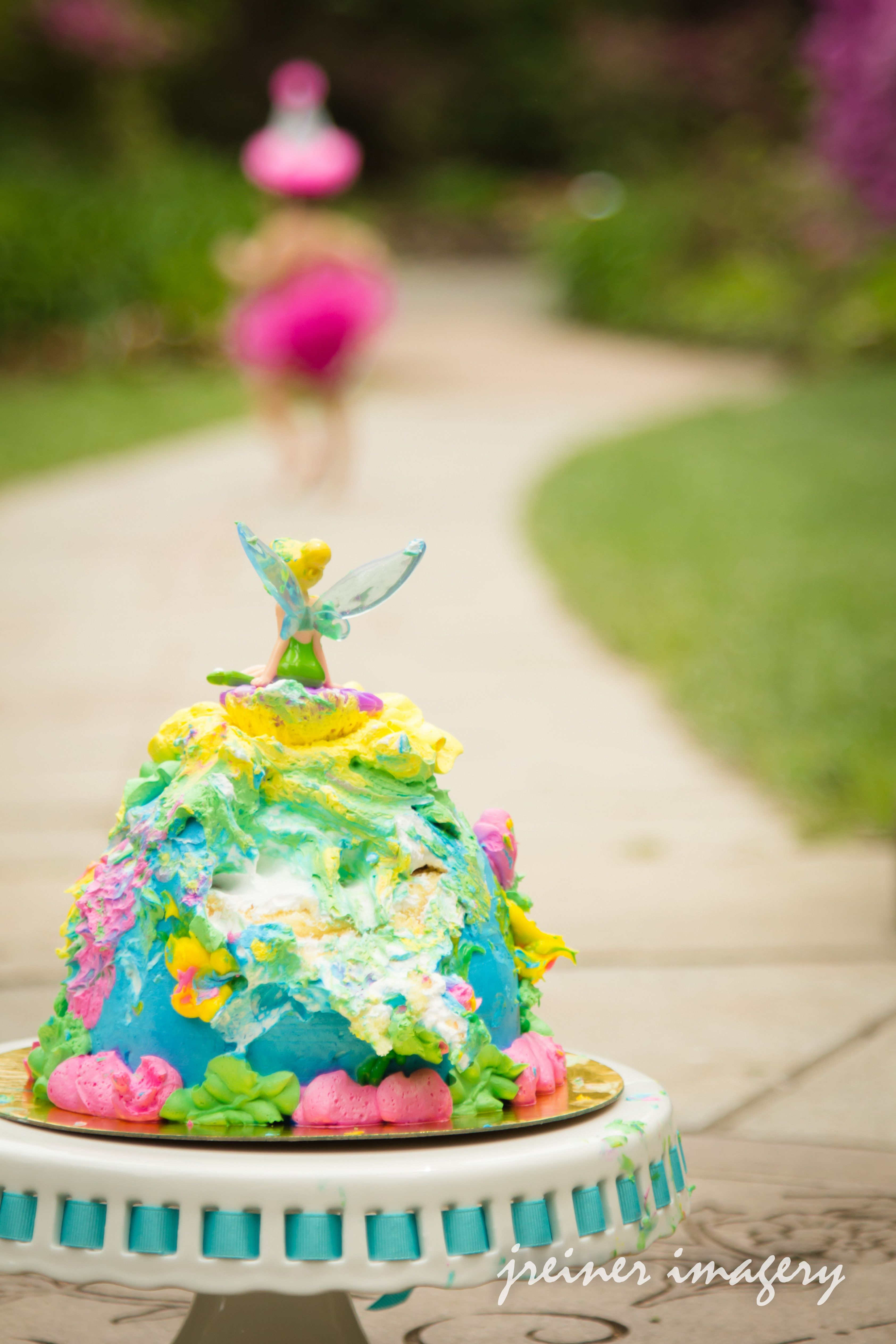 First Birthday Cake Smash Tinkerbell Daughter Girl 1 First