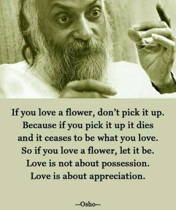 Love Is Not About Possession Words Quotes Funny Love Quotes