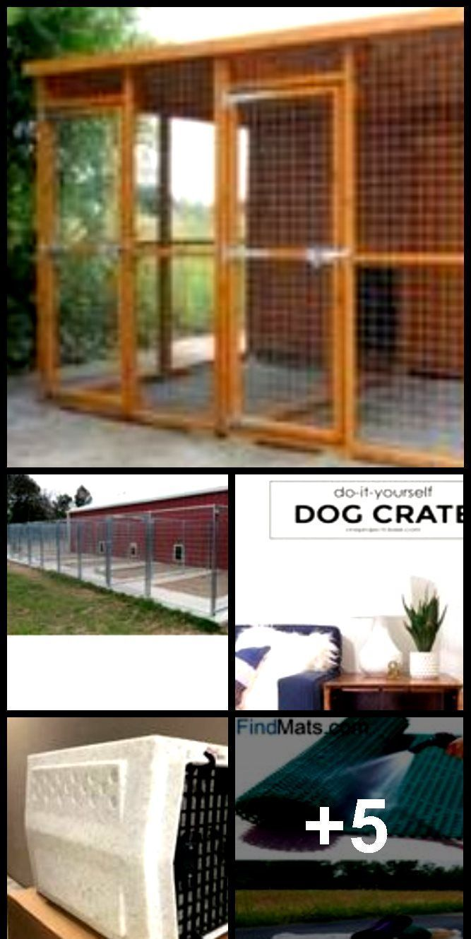 How to Build a Dog Kennel in 3 Easy Steps   How to Build a Dog Kennel in 3 Easy Steps
