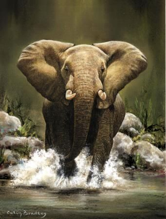 CHARGING WILD AFRICAN ELEPHANT LARGE TUSKS ANIMAL PAINTING ART REAL CANVAS PRINT