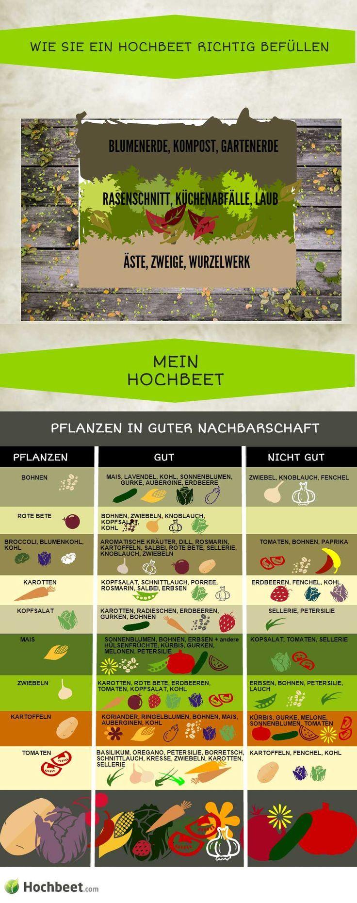 Mischkultur Im Hochbeet Gemuse Und Grafiken