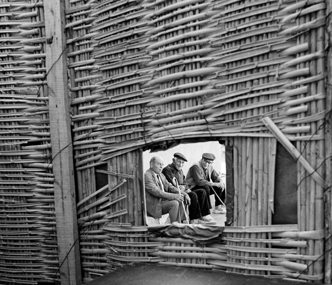 Famosos fotógrafos del pasado y del presente. Breve descripción de su obra y sus fotografías.