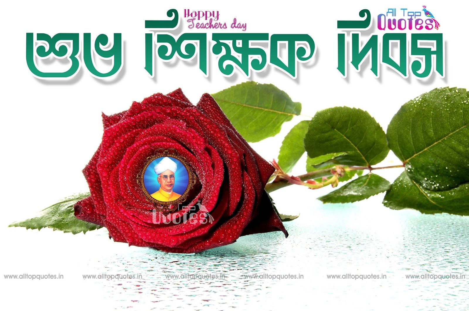 beautyful happy teachers day bengali quotes and greetings