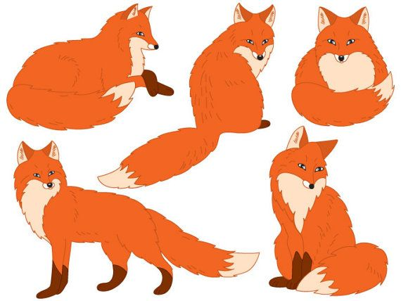 Fox Clipart - Digital Vector Woodland, Forest, Animals, Red Fox - best of coloring page of a red fox