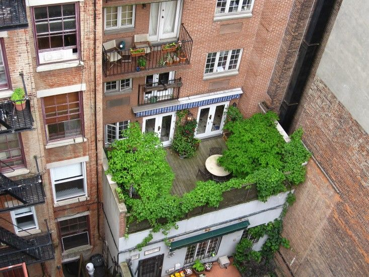 Attractive Apartment Therapy: 11 Garden Ideas To Steal From New York City