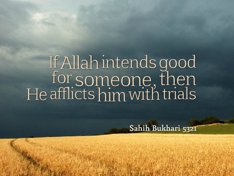Citaten Angst Voli : If allah intends good he afflicts trials islam my pride ! islam