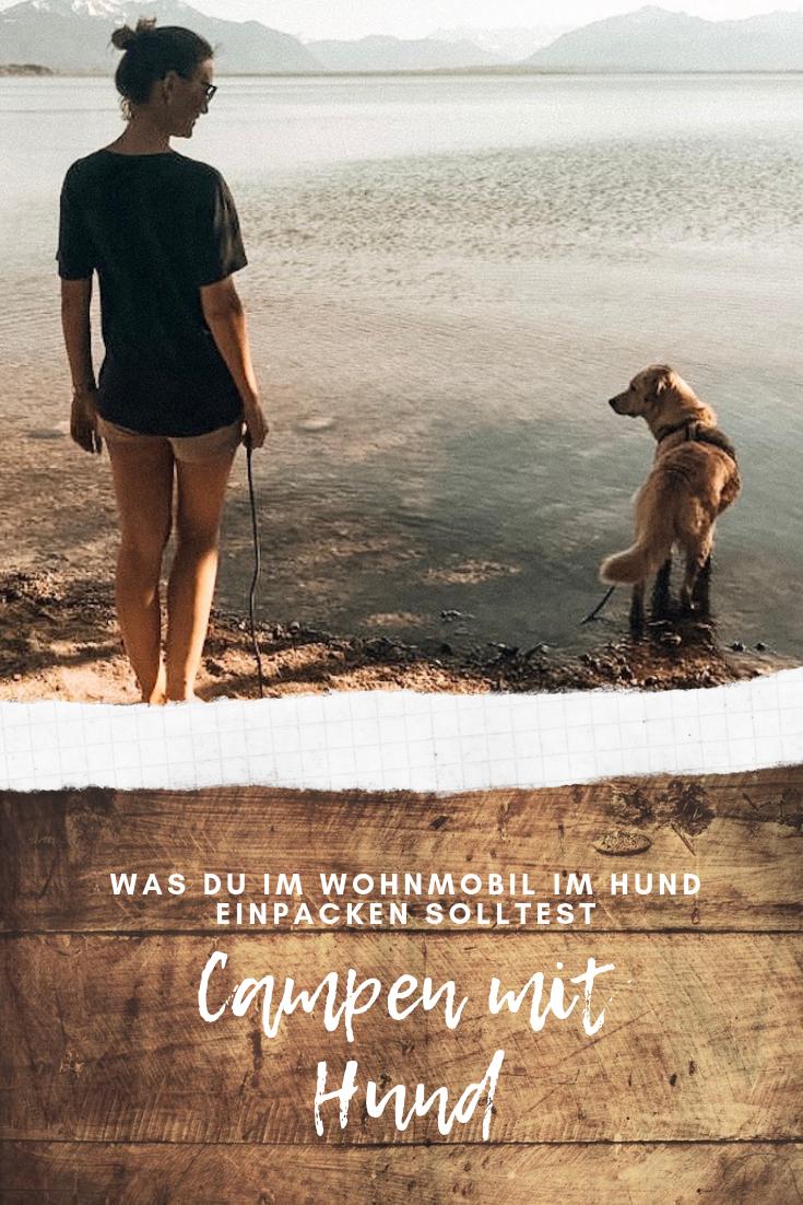 camping chiemsee mit hund