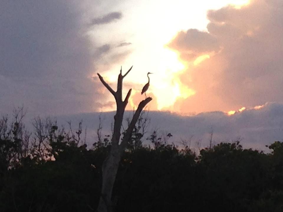 Sunset Tours Englewood FL at Stump Pass Beach State Park ...